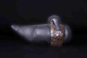 galerij-dier-eend-zwart-8965